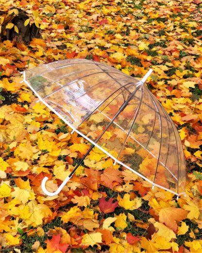 Большой прозрачный зонт на свадьбу